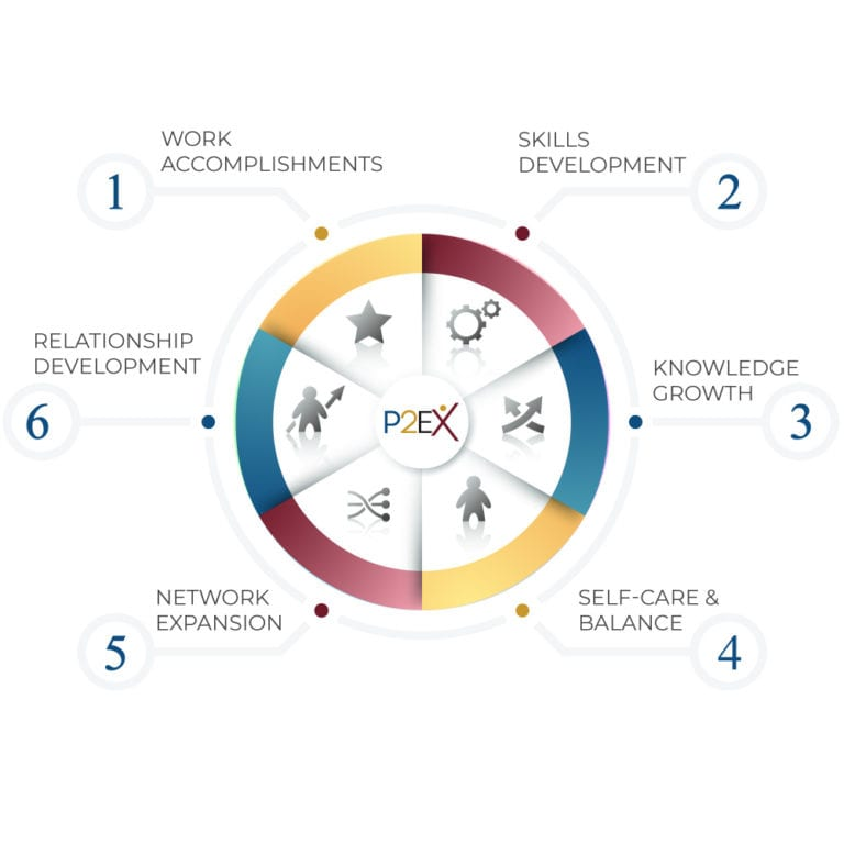P2Exceelence Professional Growth Wheel""